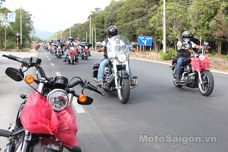 harley-48-2016-moto-saigon-4.jpg