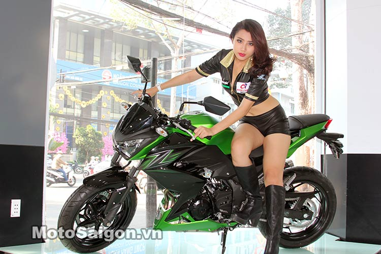 Pô đồ chơi cho Kawasaki Z300
