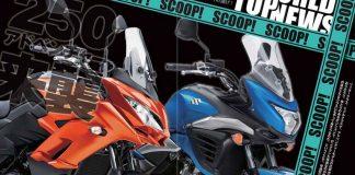 Kawasaki Versys 250 & Suzuki V-Strom 250