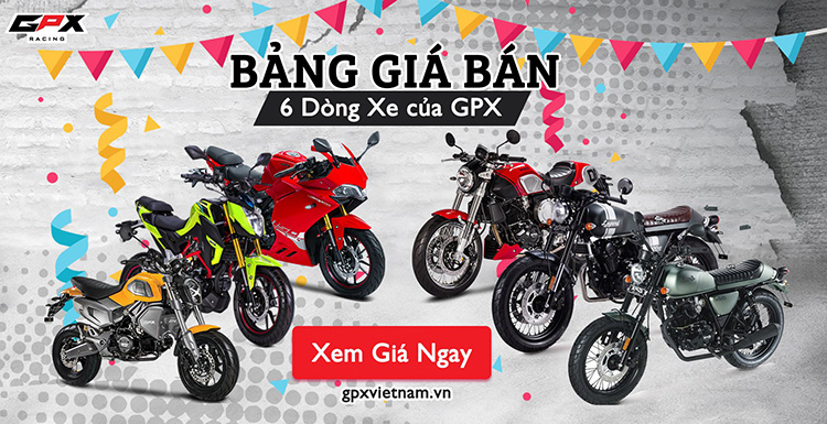 6 mẫu xe mang thương hiệu GPX đến từ Thái Lan sẽ được phân phối chính hãng tại Việt Nam bao gồm: GPX Demon 150GR (Sport-bike) GPX Demon 150GN (Naked-bike) GPX Legend Gentleman 200 (Cafe Racer) GPX Legend 150S (Classic) GPX Legend 200 (Classic) GPX Demon X (Minibike 125cc)